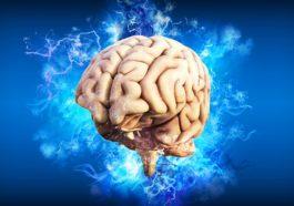 Alzheimer algas